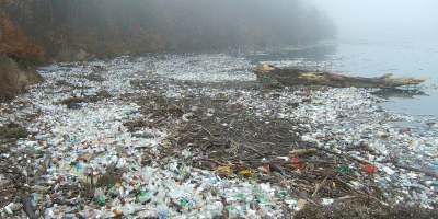 Clean Up River